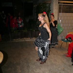 fiesta 1 fitmacherclub